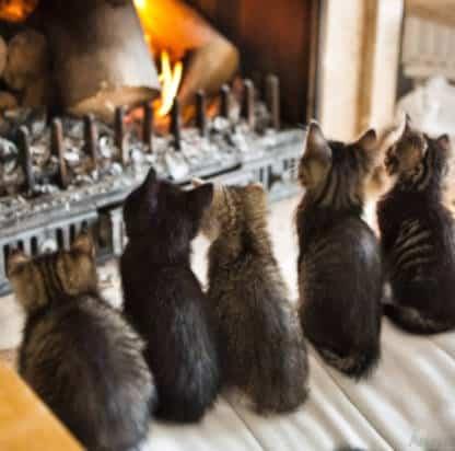 ramoner sa cheminee
